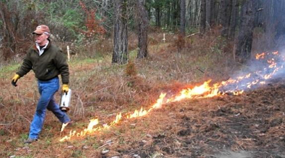4_fire_lead_574_318_s
