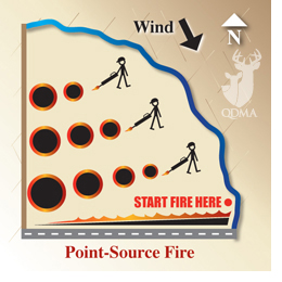 Point_source_fire