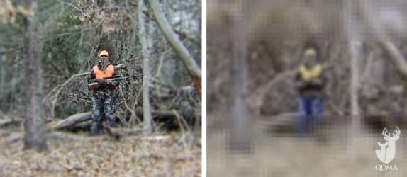 human_vs._deer_lead_574_250_s