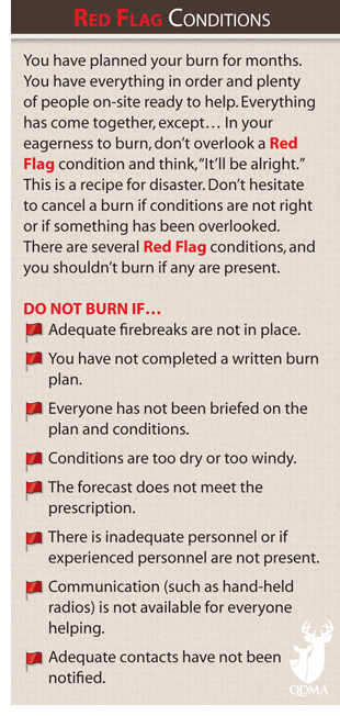 red_flag_conditions