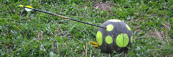 target_arrow