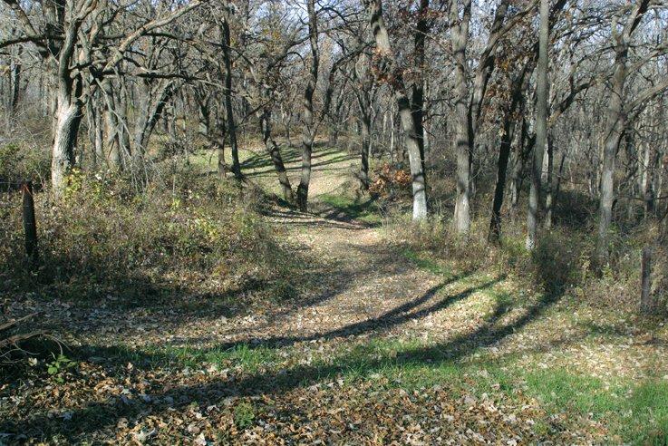 74_trail_2__large
