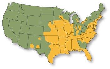 Partridge pea range map