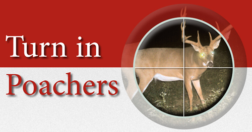 Turn in Poachers graphic