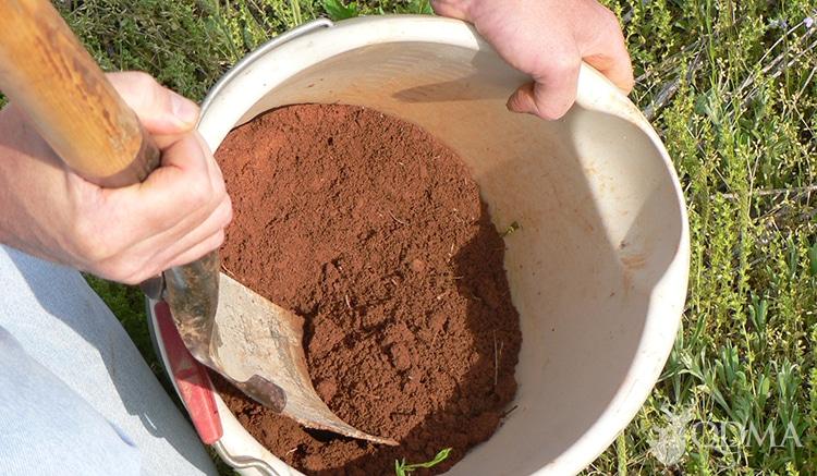 soil testing lead