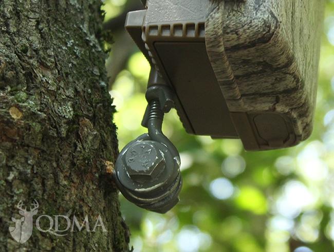 DIY trail cam mount lead